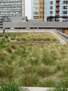 telhado-verde-2-1